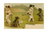 Postcard of Dogs Golfing