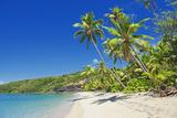 Tropical Beach  Drawaqa Island  Yasawa Island Group  Fiji  South Pacific Islands  Pacific