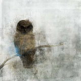 Guardian Owl
