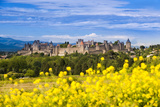 The Fortified City of Carcassonne  Languedoc-Roussillon  France