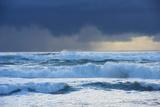 Waves  Paparoa National Park  West Coast  South Island  New Zealand