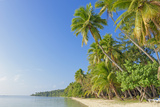 Tropical Beach  Nanuya Lailai Island  Yasawa Island Group  Fiji  South Pacific Islands  Pacific