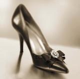Vintage Glamour Shoe