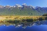 Lake Matheson Reflections  Fiordland National Park  Milford Sound  South Island  New Zealand