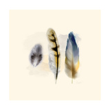 Three Feather Study 2