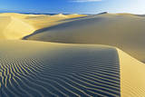 Sand Dunes  Maspalomas  Gran Canaria  Canary Islands  Spain