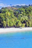 Tropical Beach  Manuel Antonio National Park  Costa Rica
