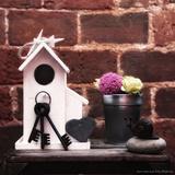 House  Keys and Snail