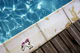 Glasses on the Edge of a Pool