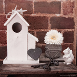 Birdhouse and Squirrel