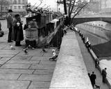Quai de Montebello 1956