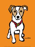 Jack Russell on Orange