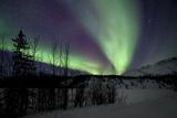 Aurora Borealis VII