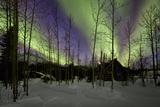 Aurora Borealis XII