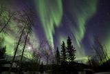 Aurora Borealis X