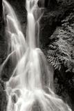 Falling Water I BW