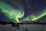 Aurora Borealis I