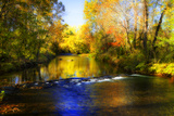 Autumn Waters II