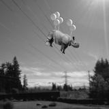 Electric Feel Papier Photo par Janine Graf