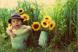 Baby and the Sunflowers