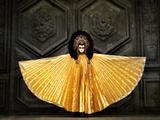Harlequin in Golden Costume