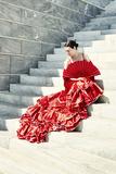 Flamenco VI