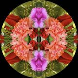 Kaleidoscope - 2