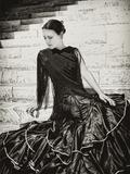 Flamenco VII