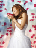 Woman in Wedding Dress with Red Rose Petals