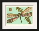 Dragonfly on Aqua II