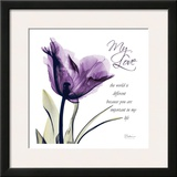 My Love  Purple Tulip