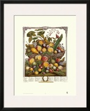 Twelve Months of Fruits  1732  July