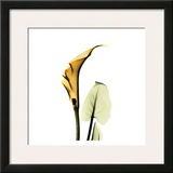 Calla Lilly in Gold