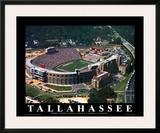 Florida State - Tallahassee  FL