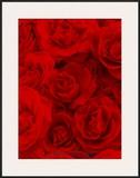 A Fleur du Mal  1999