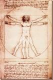 L'Homme de Vitruve Tableau sur toile par Leonardo Da Vinci