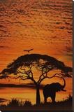 Cieux africains Tableau sur toile