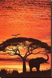 Coucher de soleil africain Tableau sur toile