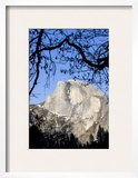 Framed Half Dome Seen from the Valley Floor  Yosemite  California  USA