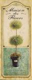 Maison Topiary