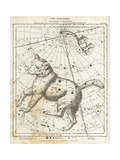 Astronomical Chart of the Constellations of Ursa Major and Ursa