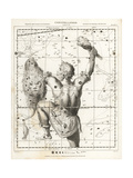 Astronomical Chart of the Constellation of Orion