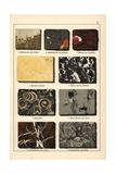 Varieties of Marble