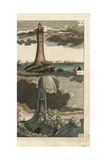 A Lighthouse in Calm and Wild Seas