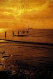 Seashore Glow II