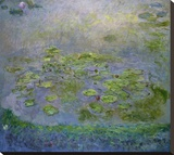 Nymphéas (Waterlilies)  c 1914-17