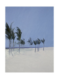Cable Beach  2008