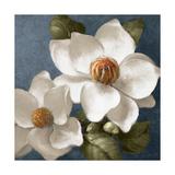 Magnolias on Blue II Reproduction d'art par Lanie Loreth