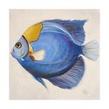 Little Fish III