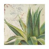 Aloe I